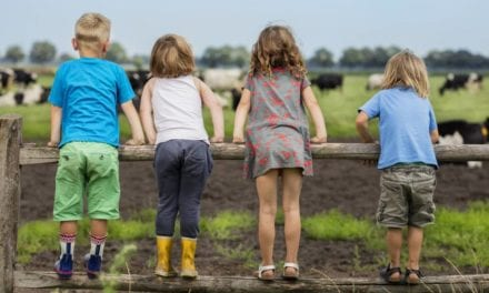 BoeBaDoe | Luxe safaritenten in Limburg | FarmCamps