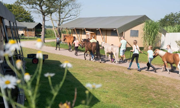 Camping Breehees | safaritenten Noord-Brabant | FarmCamps