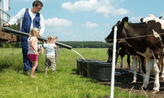 Boerderij 't Looveld | Safaritenten in Drenthe | FarmCamps