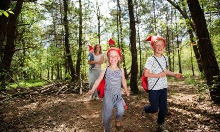 Bungalowpark Hoenderloo | Vakantiepark Veluwe | Roompot