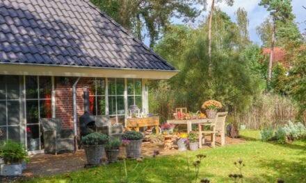 Droompark Hooge Veluwe | Vakantiepark Gelderland | Roompot
