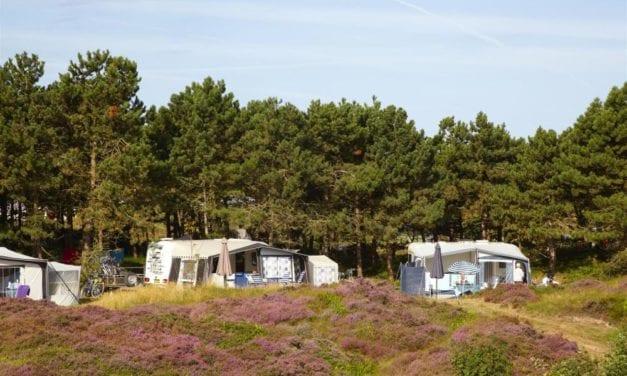 Camping Loodsmansduin | Noord-Holland | De Krim Texel