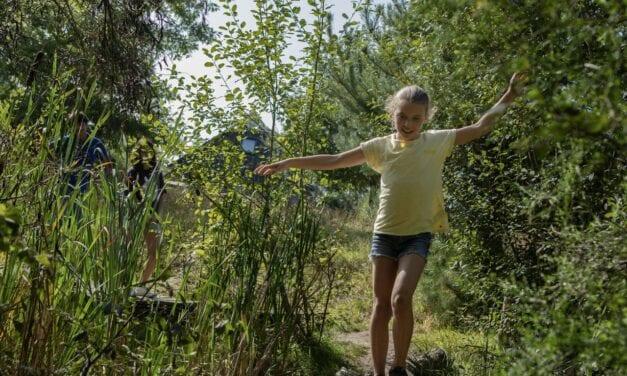 Vakantiepark Landal Orveltermarke | Drenthe