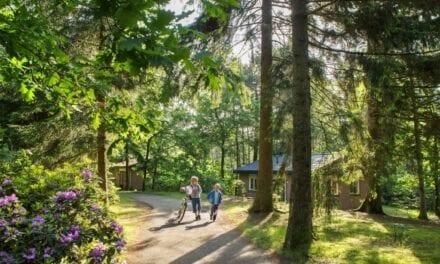 Vakantiepark Landal Heideheuvel | Gelderland