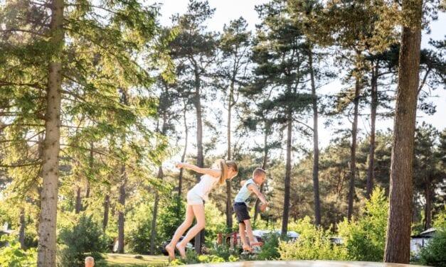 Top-15 kindvriendelijke campings in Drenthe